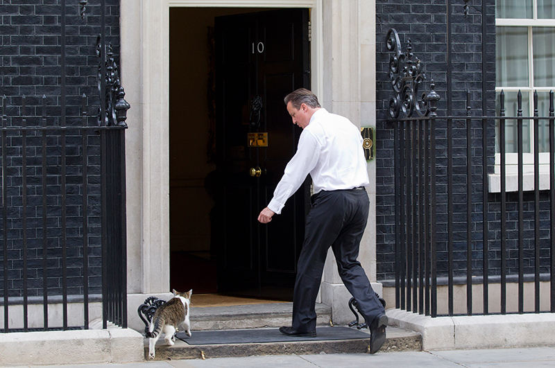 July 16, 2013 - London, London, UK - London, UK. The British Prime Minister, David Cameron, shoos Larry, the Downing Street cat, through the door of Number 10. Photo credit: Matt Cetti-Roberts/LNP (Credit Image: © Matt Cetti-Roberts/London News Pictures/ZUMAPRESS.com)