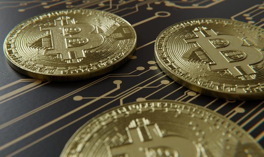 Фонд Кэти Вуд увеличил портфель криптовалютных активов во время падения биткоина