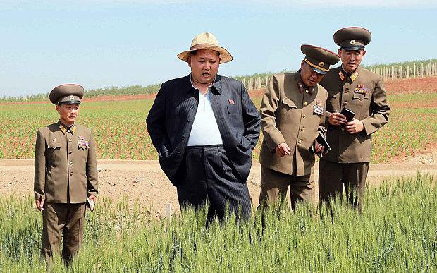 Севернокорейцам сказали готовиться к новому «трудному маршу»
