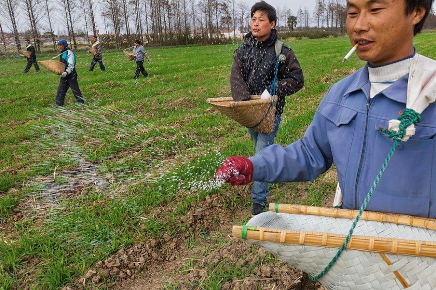 В Госдуме РФ боятся отдать землю китайцам из-за  «сепаратизма»