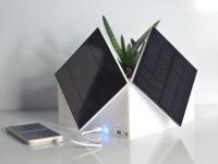 Новые идеи для экологичного дома