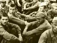 Германия выплатит денежные компенсации бывшим советским военнопленным