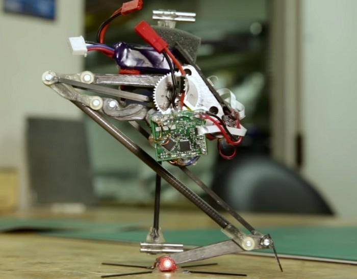 Создан робот-паркурщик SALTO (фото, видео)