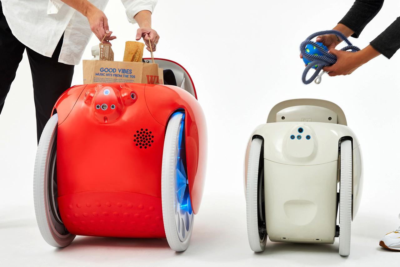 fdlx.com Презентован Gitamini - робот-компаньон для перевозки вещей (фото, видео)