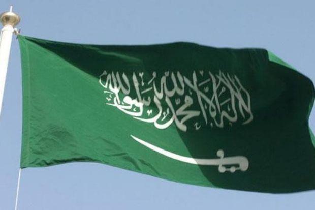 Европарламент требует эмбарго на продажу оружия Саудовской Аравии