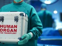 63% украинцев согласны отдать свои органы после смерти для трансплантации