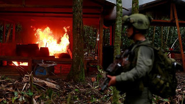В Колумбии уничтожили более 100 лабораторий по производству кокаина