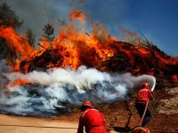 Firefighters work to douse a fire in Alvaiazere, central Portugal, Tuesday, Sept. 4, 2012. Portugal's Civil Protection Service says firefighters have extinguished two major forest blazes that raced across thick woodland for more than 30 hours and claimed the life of one person. On Monday, more than 7,300 firefighters and almost 2,000 vehicles attended 289 major forest blazes. (AP Photo/Francisco Seco)