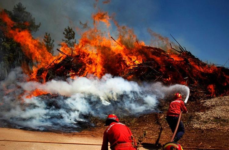 Португалия просит международной помощи в борьбе с лесными пожарами