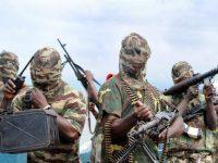 "700 заложников ""Боко Харам"" сбежали из плена"