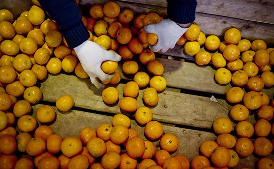 Узбекистан запретил экспорт овощей и фруктов
