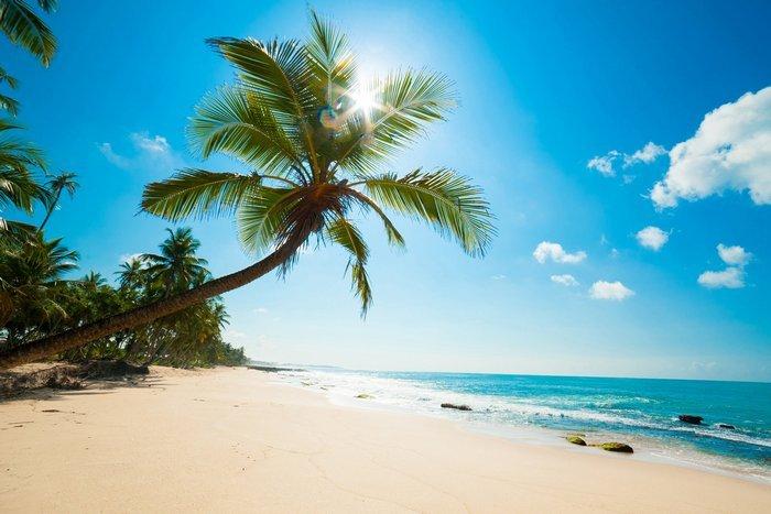 fdlx.com Карибское море Атлантический океан пляжный отдых, море, какое море, отдых на море за границей, куда поехать отдохнуть, куда поехать на море