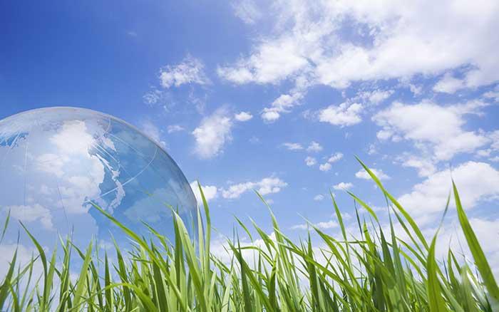 Бизнес идея: идеальная компания по вывозу отходов