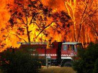 Из-за пожара в огненной ловушке оказались посетители австралийского парка