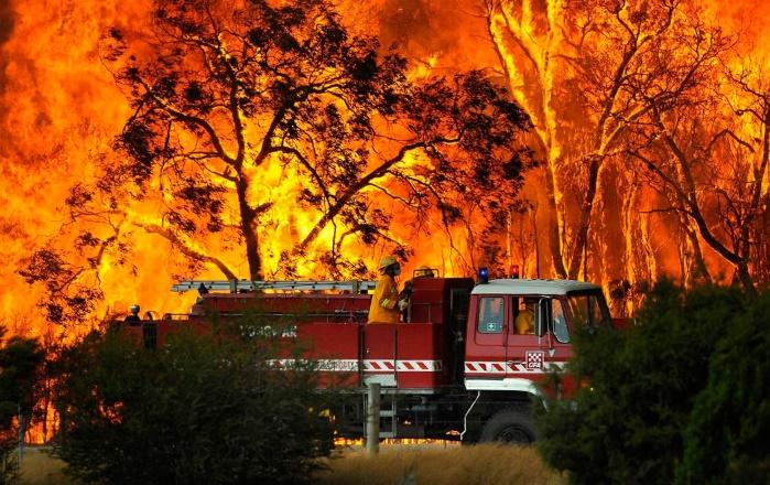 Австралия: из-за пожара в огненной ловушке оказались посетители парка