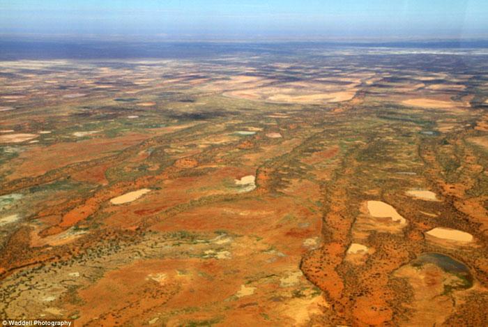 В Австралии продается землевладение, превышающее по площади Португалию или Венгрию (фото)