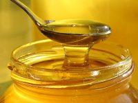 Бизнес идея: экспорт меда