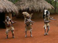 Бразилия: полиция расследуют массовое убийство членов амазонского племени
