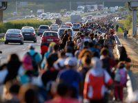 Брюссель выделяет Италии дополнительные 100 млн евро из-за притока беженцев
