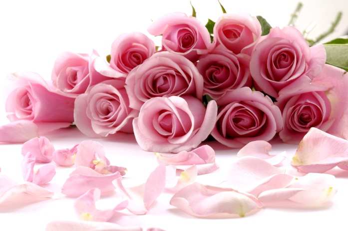 Цветы на Новый год от Flowers-sib.ru