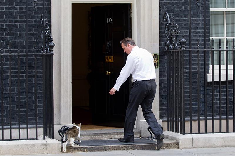 July 16, 2013 - London, London, UK - London, UK. The British Prime Minister, David Cameron, shoos Larry, the Downing Street cat, through the door of Number 10. Photo credit: Matt Cetti-Roberts/LNP (Credit Image: © Matt Cetti-Roberts/London News Pictures/ZUMAPRESS.com)