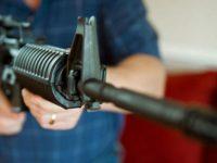 Чехия подала иск против новых правил ЕС по контролю автоматического оружия