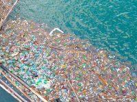 Давос: бизнесмены договорились об утилизации пластиковой упаковки