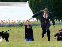 Домашние питомцы президентов США