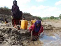 Двухлетняя засуха в Сомали вызвала гуманитарную катастрофу