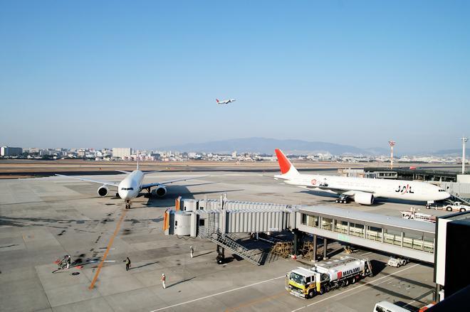 Из-за запрета полетов в Египет потери российских туроператоров превысят 3,6 млрд рублей