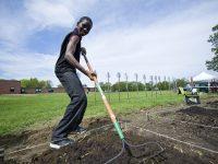 Экономические чудеса Африки или хороший результат от реформ