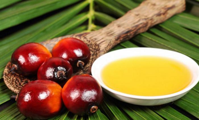 ЕС намерен запретить использование пальмового масла