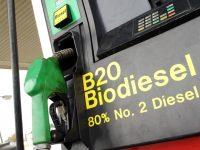 Евросоюз заставил Эстонию добавлять в бензин биодобавки