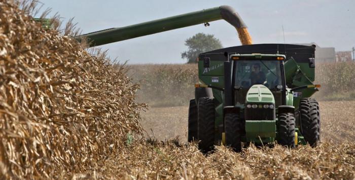 Фермеры обеспечивают более 41% украинского экспорта