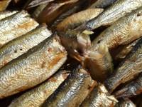 Россия запрещает рыбу и рыбные консервы из Польши
