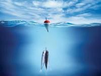 Бизнес идея: организация рыбалки и активного отдыха