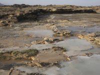 Горы Омана вытягивают углекислый газ из воздуха, – ученые