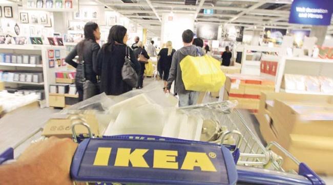 IKEA в 2017 году стала одним из крупнейших владельцев лесов в Литве