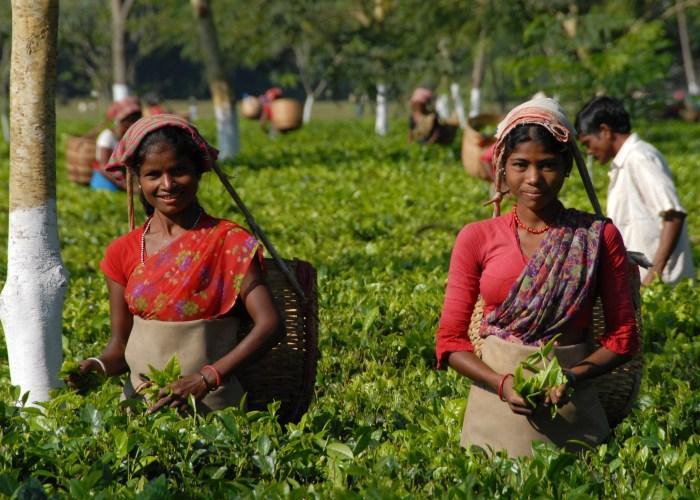 Не Китай: Индия вышла на первое место по по темпам роста экономики