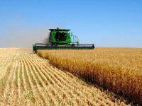 Инвестиции в сельское хозяйство Украины выросли на 58%