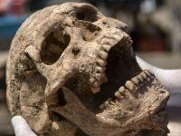 Исследователи обнаружили древнейший случай заболевания раком