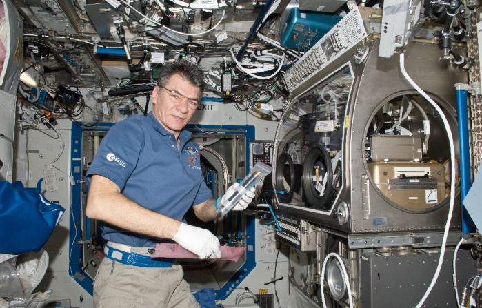 """Итальянский космонавт удаленно зажег огни на самой большой """"елке"""" в мире"""