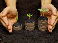 Изменился порядок регистрации прав собственности на землю, — Кабмин