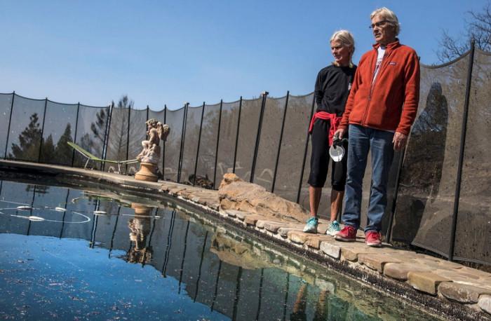 Калифорнийская пара выжила во время пожара, спрятавшись в бассейне
