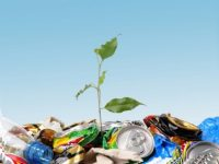 Китай поможет Украине в производстве энергии из отходов