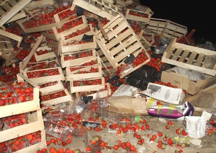 В России уничтожили 38 тонн украинской клубники, - Россельхознадзор