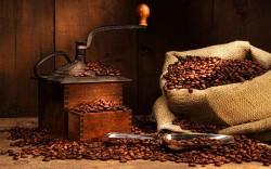 Кофейни: аромат успешного бизнеса