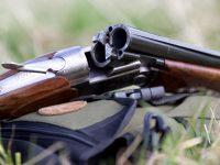 Когда открытие и закрытие сезона охоты 2018-2019 в Украине? (изменения в лимитах, сроках и документах)