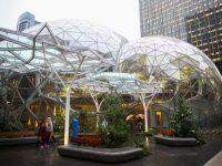 """Компания Amazon построила """"тропический"""" офис за $4 миллиарда"""