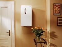 Какие газовые котлы выбрать: с вентиляторной или атмосферной горелкой?